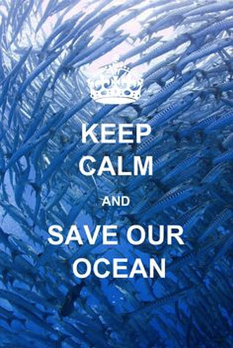 You Can Help Save Our Oceans